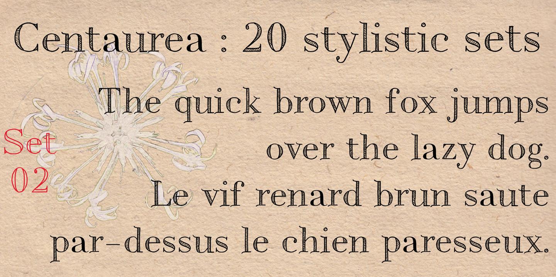 détail Centaurea